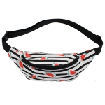 11170058B Watermelon Fanny Pack