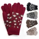 JG520 Winter Gloves