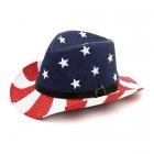 LOH029 USA Flag Fedora
