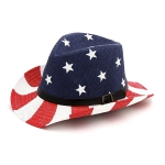 LOH029 USA Flag Fedora