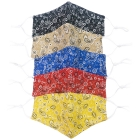 S-55 Paisley Pattern Reusable Mask (1DZ)